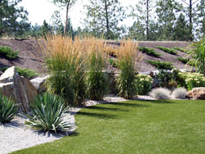 Don recommends waterwise landscapes using draught tolerant plants, Natures Gold, Waterwise Soil and Synlawn®